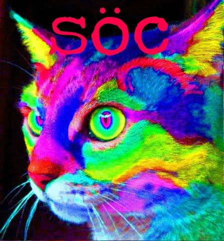 Anomalies @ THE CAT