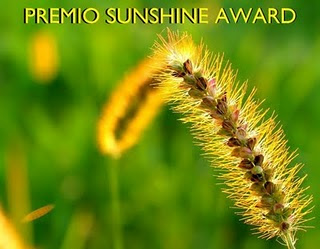 SALOM COMPARTE CONMIGO EL PREMIO SUNSHINE AWARD y sus generosas palabras...