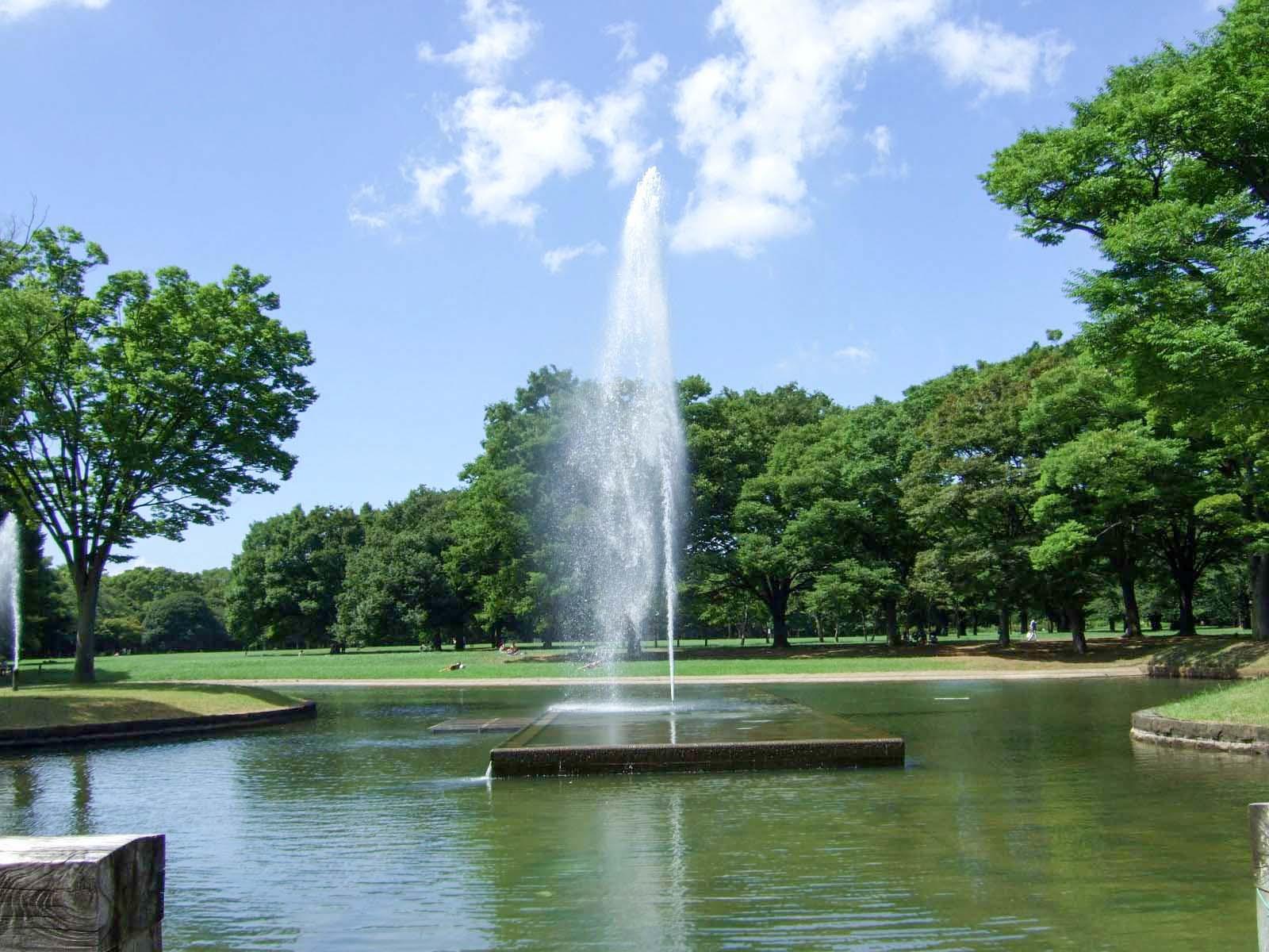 噴水,森林,代々木公園,盛夏,真夏〈著作権フリー無料画像〉Free Stock Photos