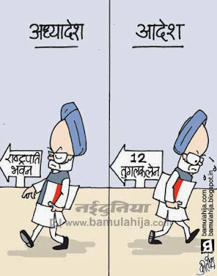 corruption cartoon, corruption in india, congress cartoon, parliament, rahul gandhi cartoon, president cartoon, manmohan singh cartoon, indian political cartoon