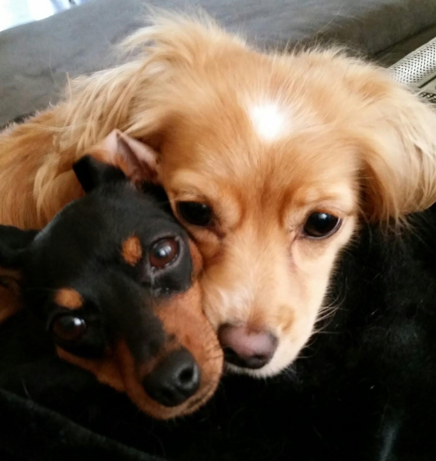 Jaika & Ava