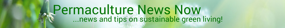 Permaculture News Now ...news and tips on sustainable and regenerative green living!