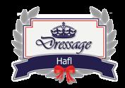 Dressage Hafl