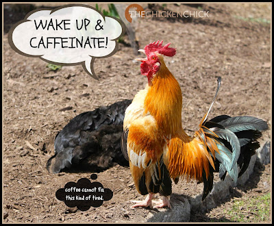 Wake up & Caffeinate!