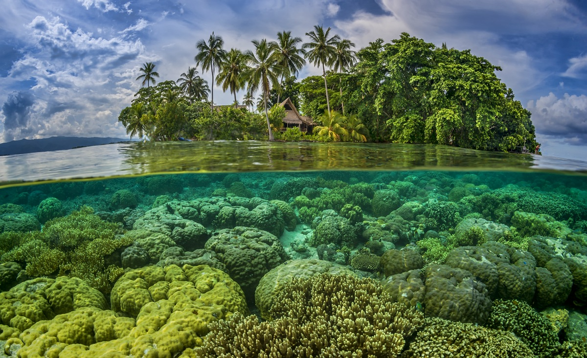 Climate change: Paradise lost as the Pacific's Solomon Islands sink into the sea