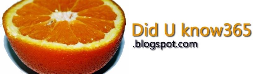 Did U Know 365