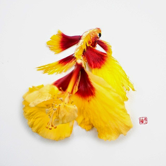12-Lim-Zhi-Wei-Limzy-Paintings-using-Flower-Petals-www-designstack-co