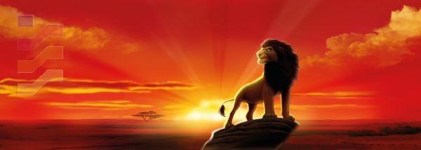 fototapeta z królem lwem