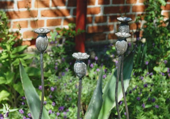 Blomstöd i form av frökapslar