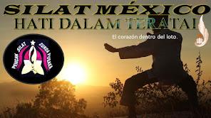 WONG TRAINING CENTER MX