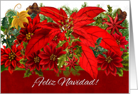 Happy-Christmas-2015-Quotes-in-Spanish
