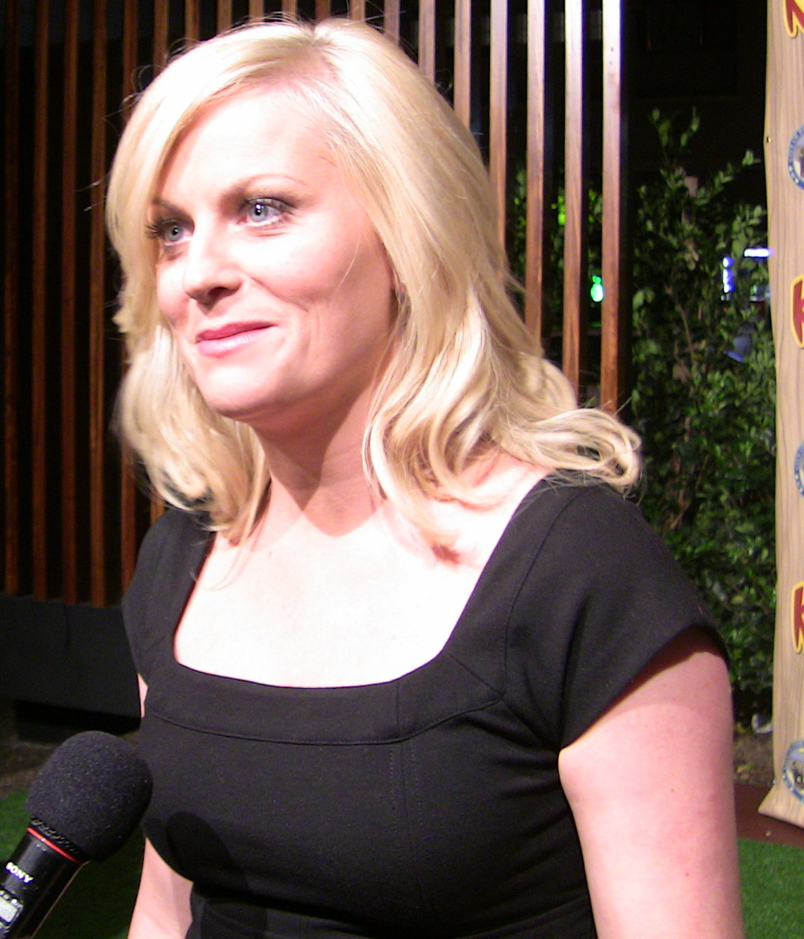 Poehler, 39, Is Having A Year She's Long Deserved: She Was Nominated