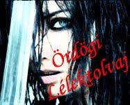 Kedvenc internetes regényem!