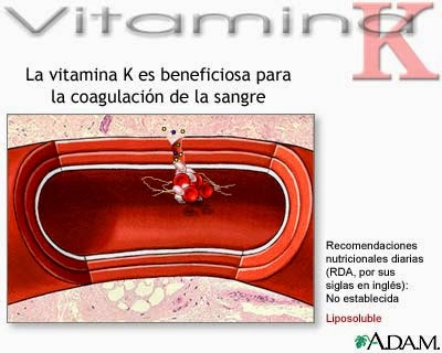 Comida con Vitamina K