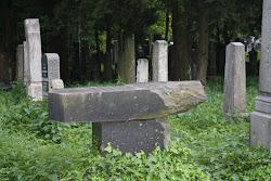 Overturned Jewish Gravestone