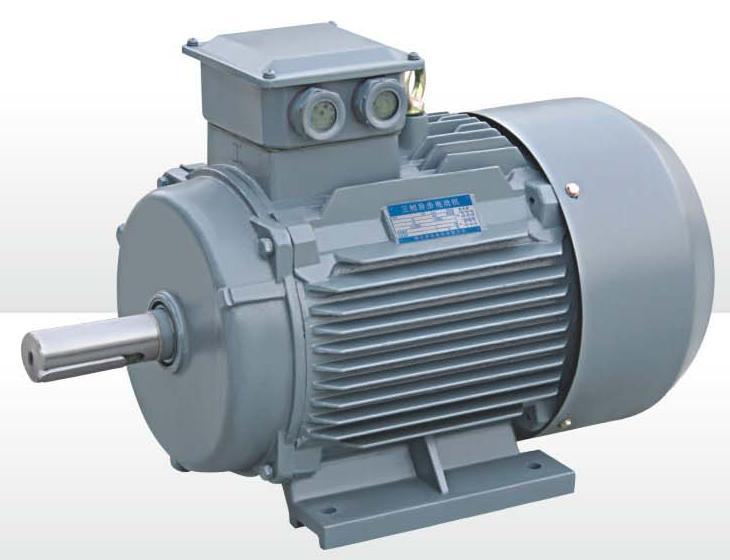 Y2 Series High Low Voltage Js Product Dinamo Listrik Boddol