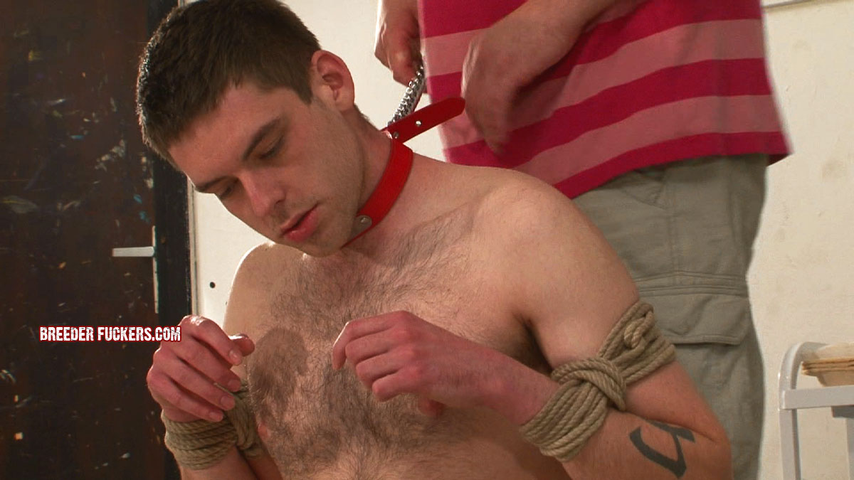 straight guy tied forced suck
