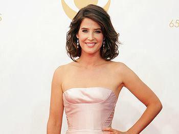 cortes pelo 2014 premios Emmy