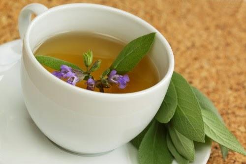 السالمية, فوائد زيت السالمية, شاي السالمية, شاي, هرمون الانوثة, الانوثة, صحة, الطب البديل, المرامية,