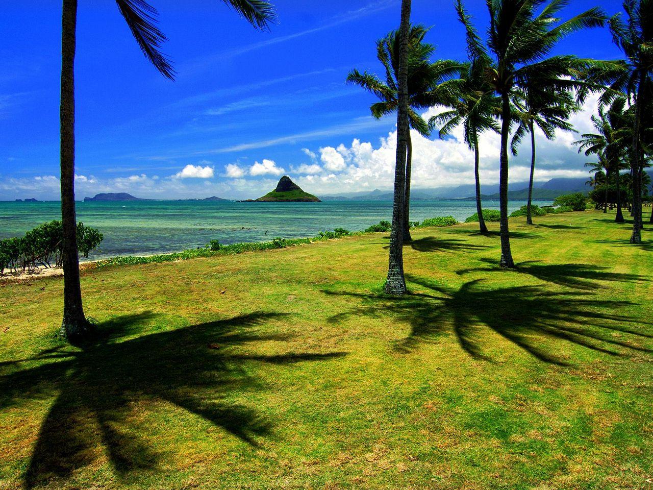 http://1.bp.blogspot.com/-zq2FL1e59uQ/TiqlKykNOTI/AAAAAAAAJlw/hkQ-m81t8uk/s1600/Chinaman_s_Hat%252C_Oahu%252C_Hawaii___erc.jpg