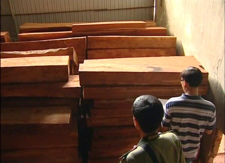 Gia Lai: Phát hiện vụ tàng trữ gỗ không có nguồn gốc
