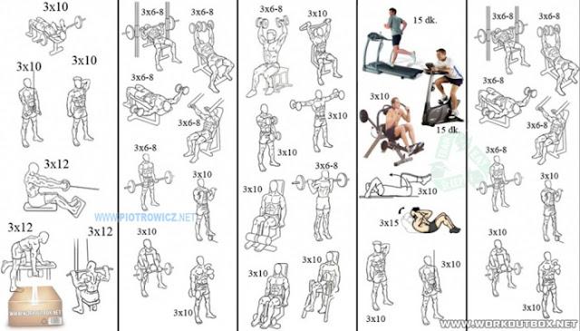 Схемы тренировок в тренажёрном зале
