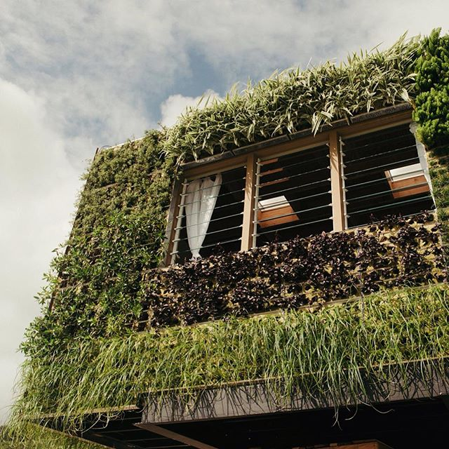 08-Elevate-Structure-Living-Wall-Eco-Friendly-ADU-or-Micro-Home-Architecture-www-designstack-co