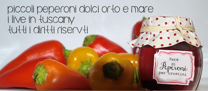 peperoni-ripieni-tonno-porro-olive