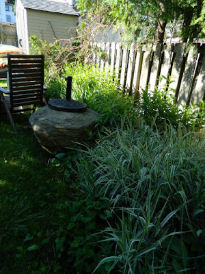 Riverdale Toronto back yard garden cleanup before by Paul Jung Gardening Services