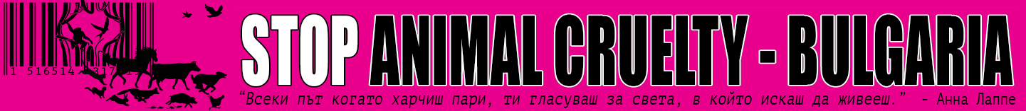 STOP ANIMAL CRULETY - BULGARIA