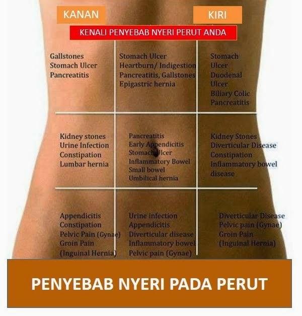 Faktor Penyebab Perut Menjadi Sakit