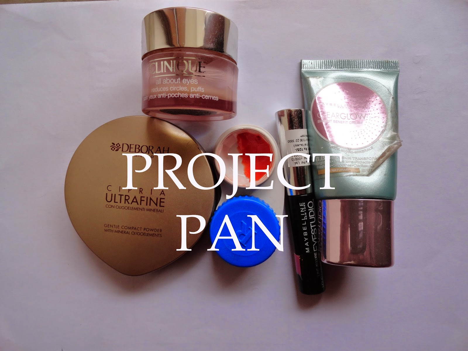 Beauty Blogger Challenges: Project Pan #1 image