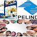 Lowongan Pekerjaan Pelabuhan Indonesia II (Persero)