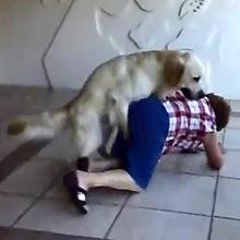 Perro follándose a la abuela