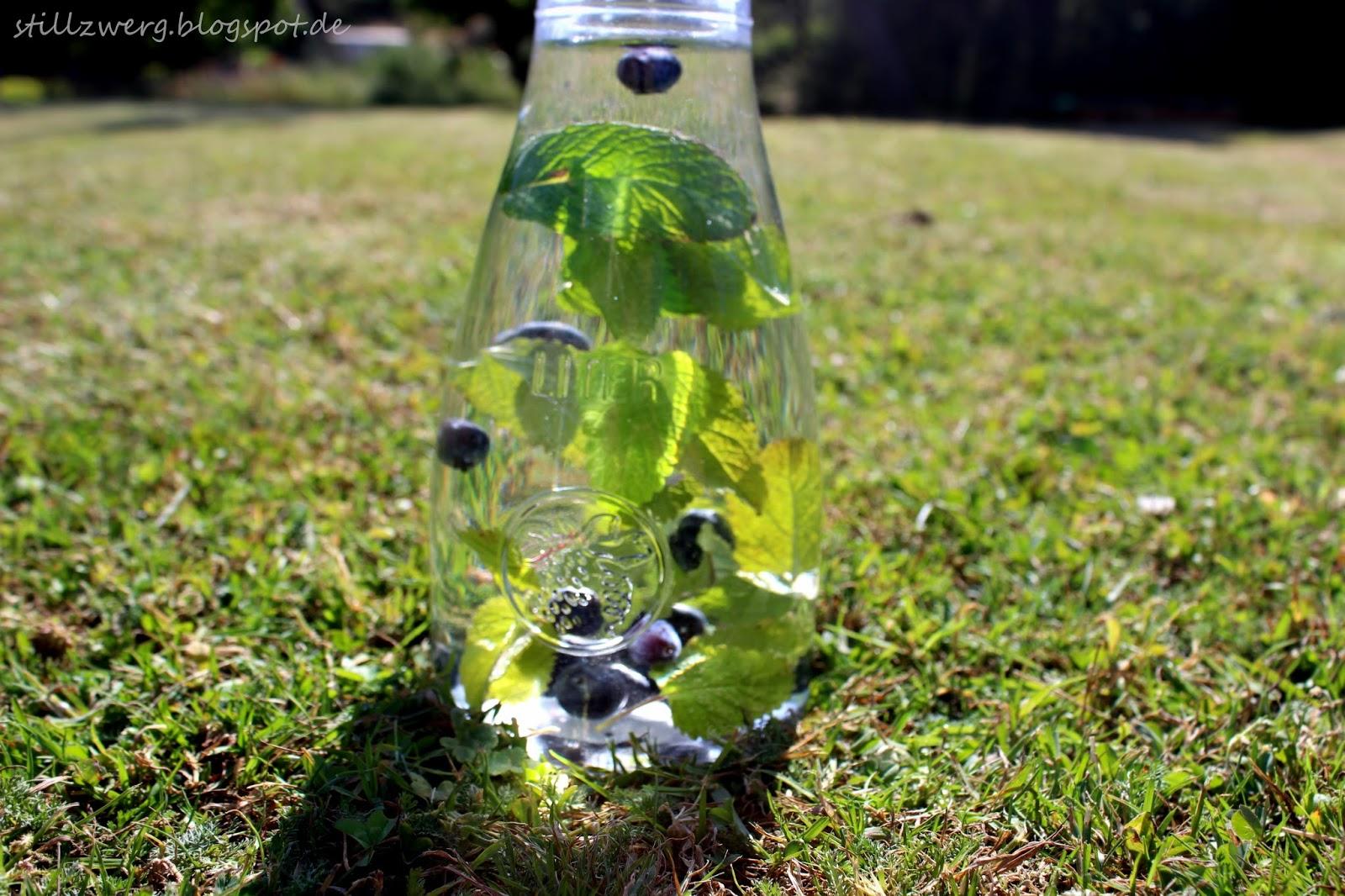 Der Stillzwerg : Sommer im Glas - 5 erfrischende Sommer Getränke