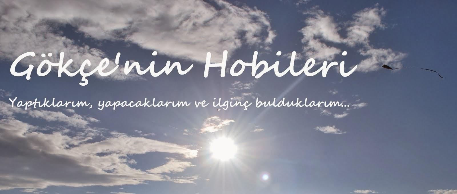 Gökçe'nin Hobileri