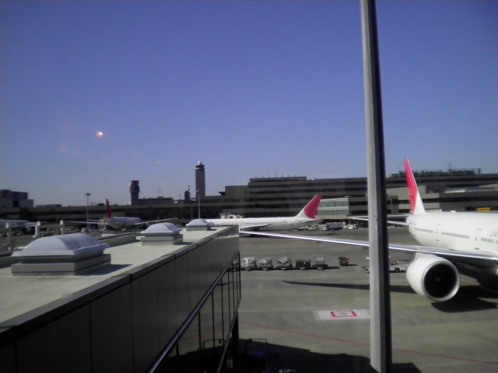 JAL at Narita to Jakarta