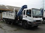 Truck Tronton + Crane 25 T + Winch
