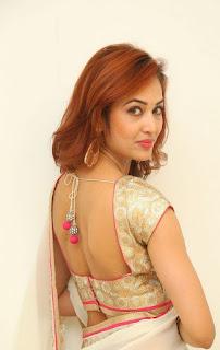 Actress Vidisha Srivastava Latest Pictures in Saree at Harinath Wedding Reception  6.jpg
