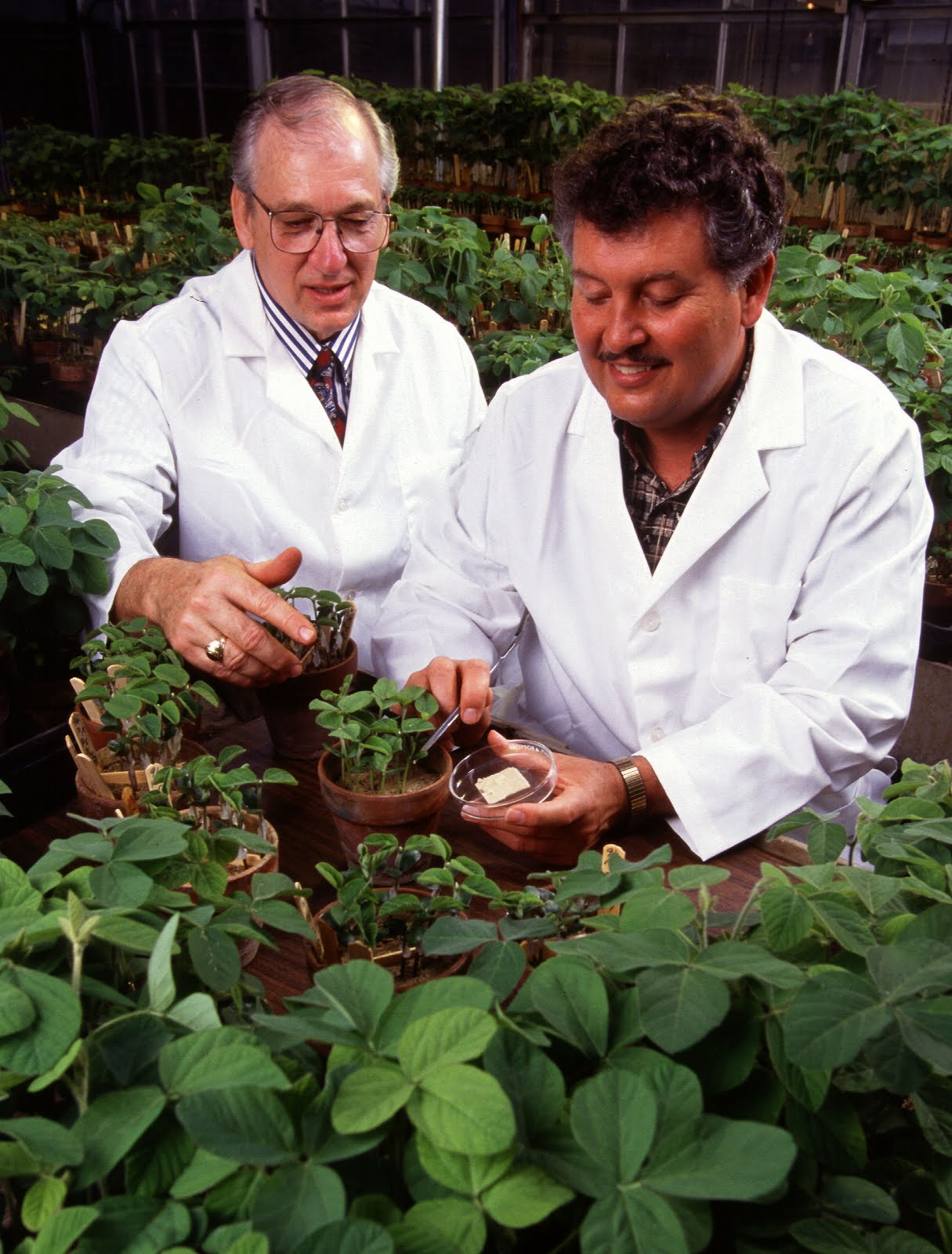 [USDA+scientists]