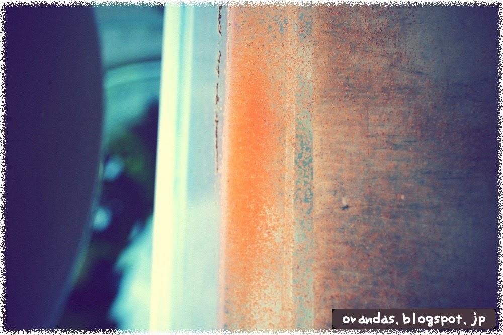 ブラインシュリンプの集光性の画像です。