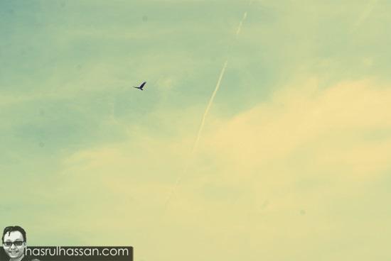 Terbang Tunduk Blogger Malaysia