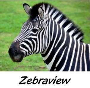 Zebraview