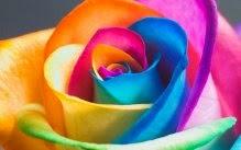 As cores podem revelar a personalidade de quem a escolhe.