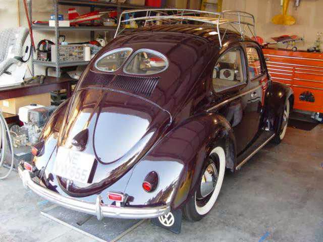 Survivor 1951 split window buy classic volks for 1951 volkswagen split window
