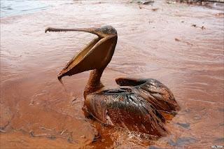 Bencana Melanda di Teluk Meksiko