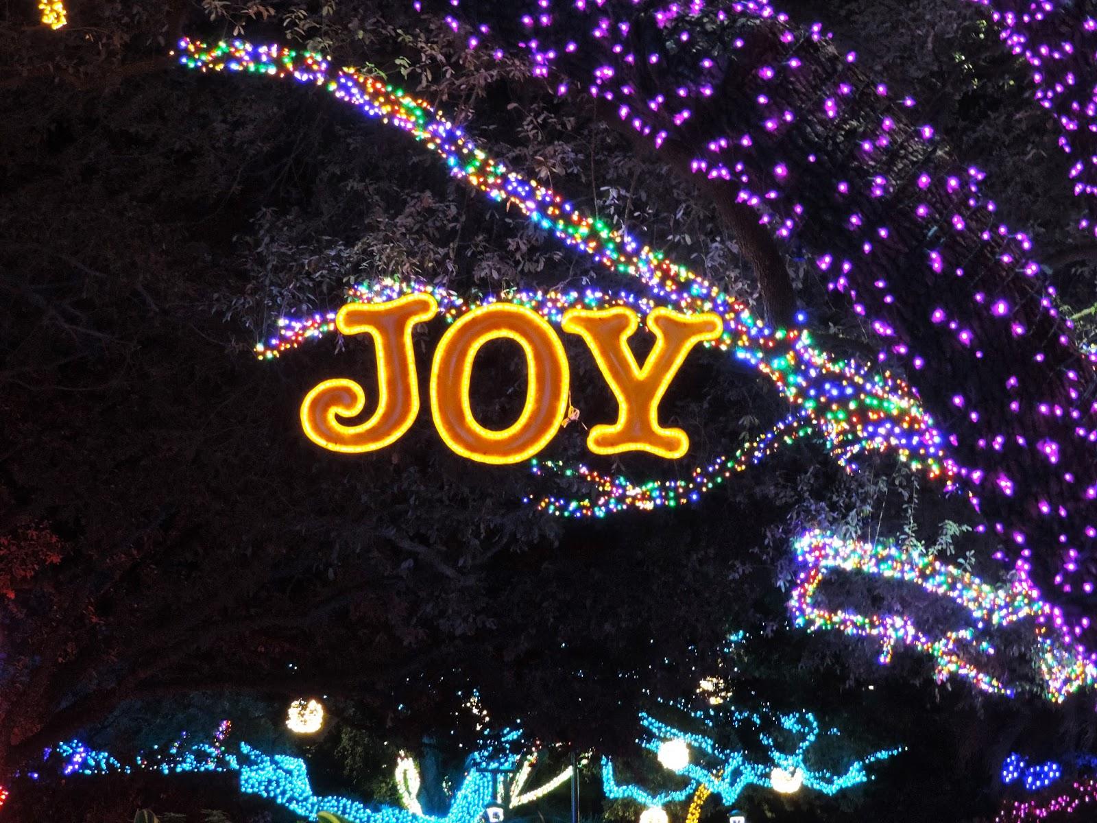Golden Roses Houston Zoo Lights