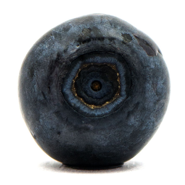 Blueberry close up - Planet blueberry