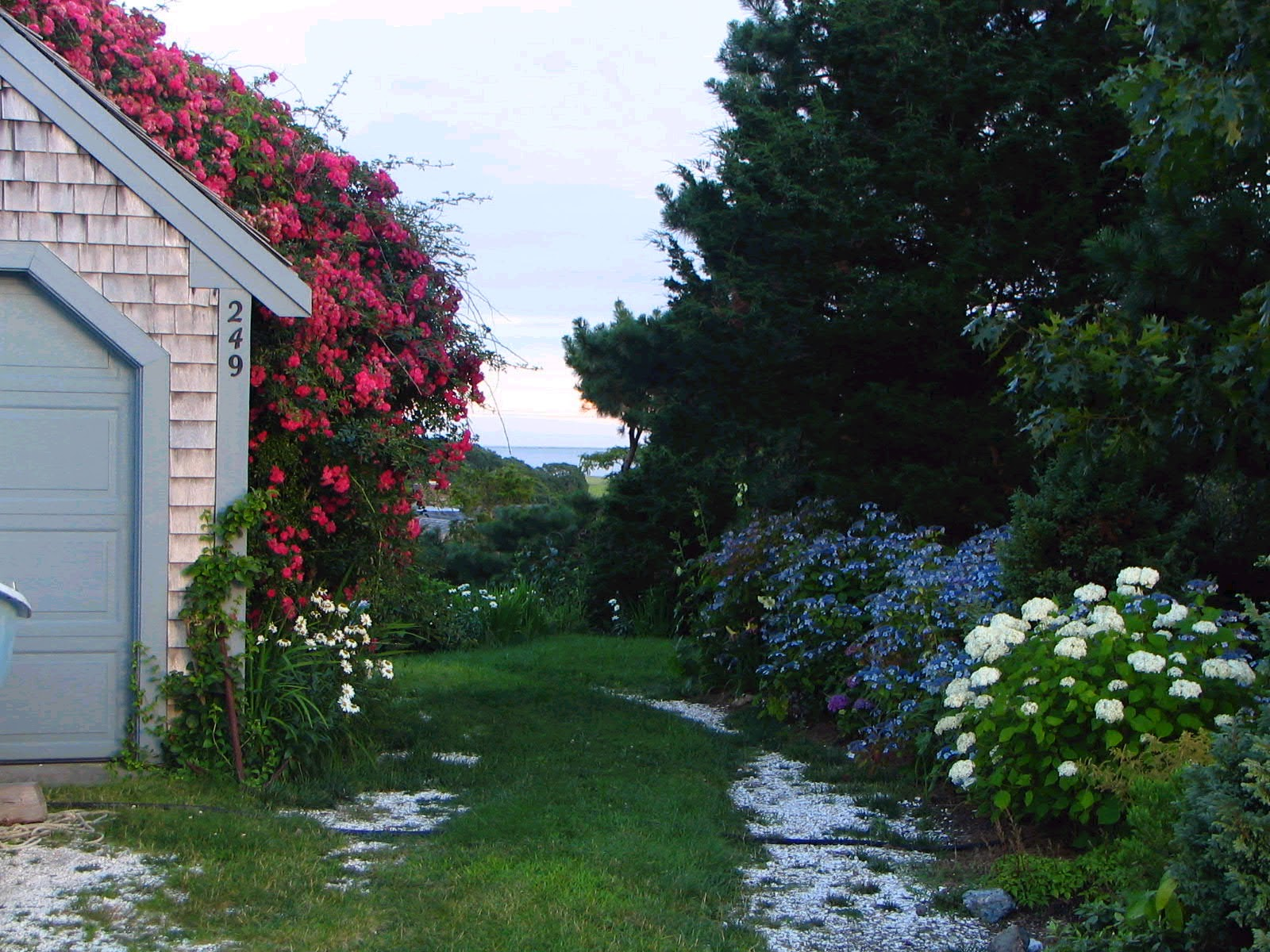 Cape Cod Rose Part - 24: Cape Cod Rambling Rose Roof Trellis. Photo Courtesy Of Ark Gardens