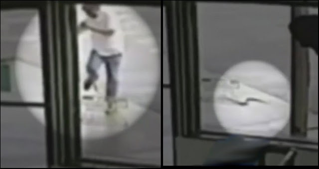Homem distraido com celular leva mordida